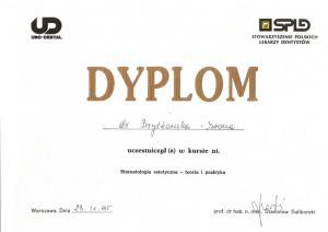 Dyplom--kurs-stom-big